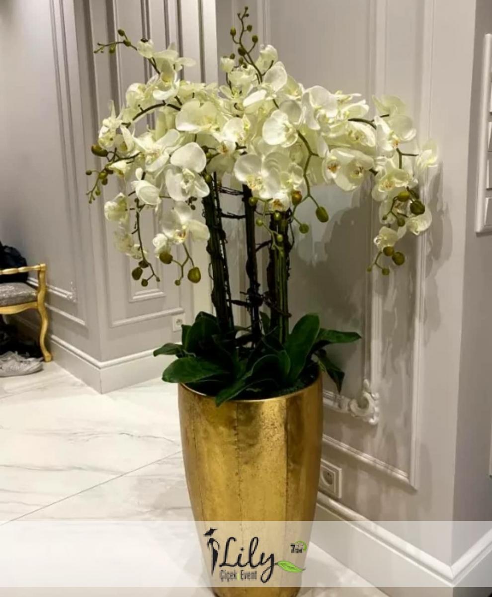 vip orkide tasarımı