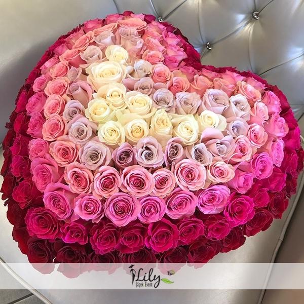 özel renklerde güller