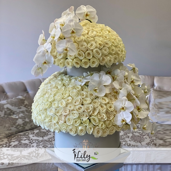 kutuda 201 adet beyaz gül ve orkideler