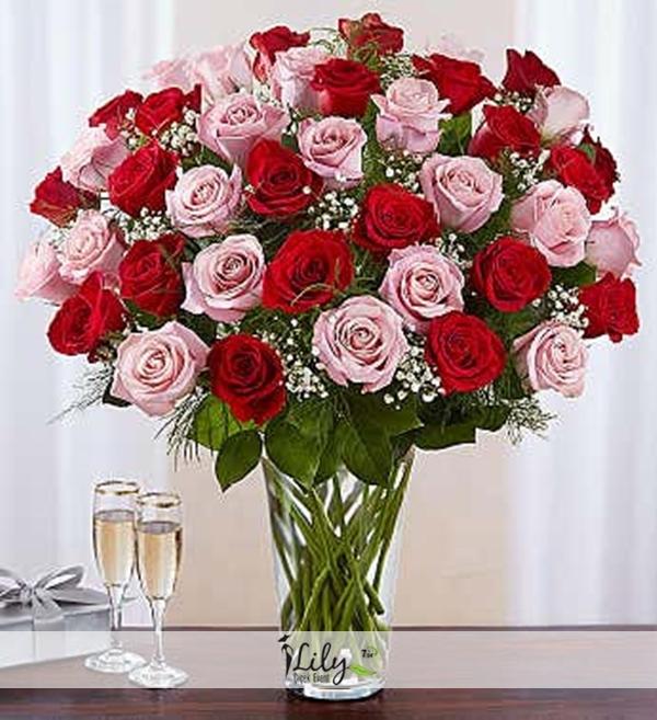 vazoda 41 adet pembe ve kırmızı güller