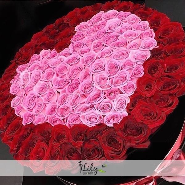 Pembe ve kırmızı ekvator güller VIP