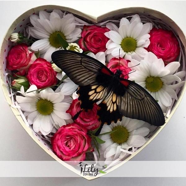 kutuda pembe güller ve papatyalar