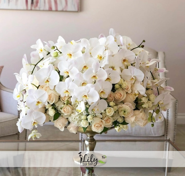 vip orkideler ve güller