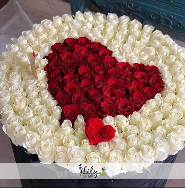 kutuda 101 adet kırmızı beyaz güller