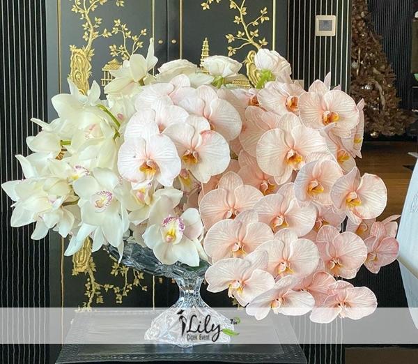 lily vip orkide tasarımı