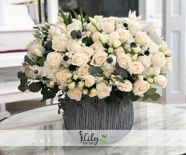 vip beyaz güller