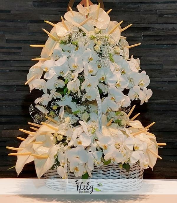 sepette vip orkide antoryum tasarımı