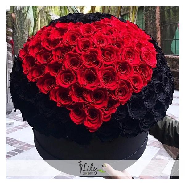 101 adet siyah ve kırmızı güller
