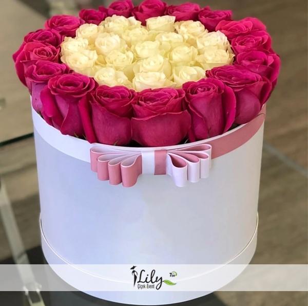 kırmızı içinde beyaz güller